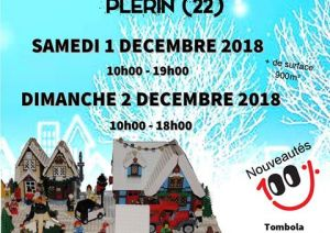Exposition LEGO PLERIN (22190) - ANIMATION EXPO BRIQUES LEGO