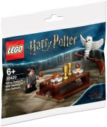 LEGO Harry Potter 30420 Harry Potter and Hedwig : Owl Delivery (Polybag)