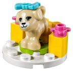 LEGO Friends 41088 Le dressage du chiot