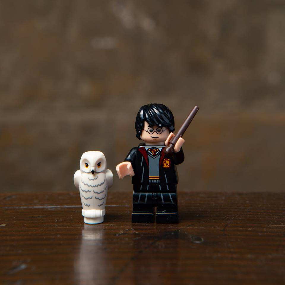 Nouveau LEGO Minifigurines 71022 Harry Potter / Fantastic Beasts